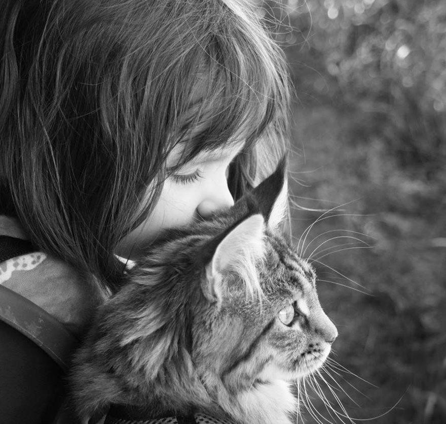gatito niña autista 8