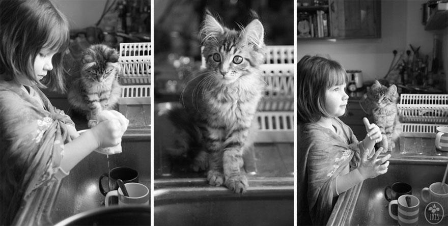 gatito niña autista 9