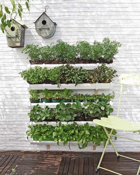 jardin-vertical-con-palet-1