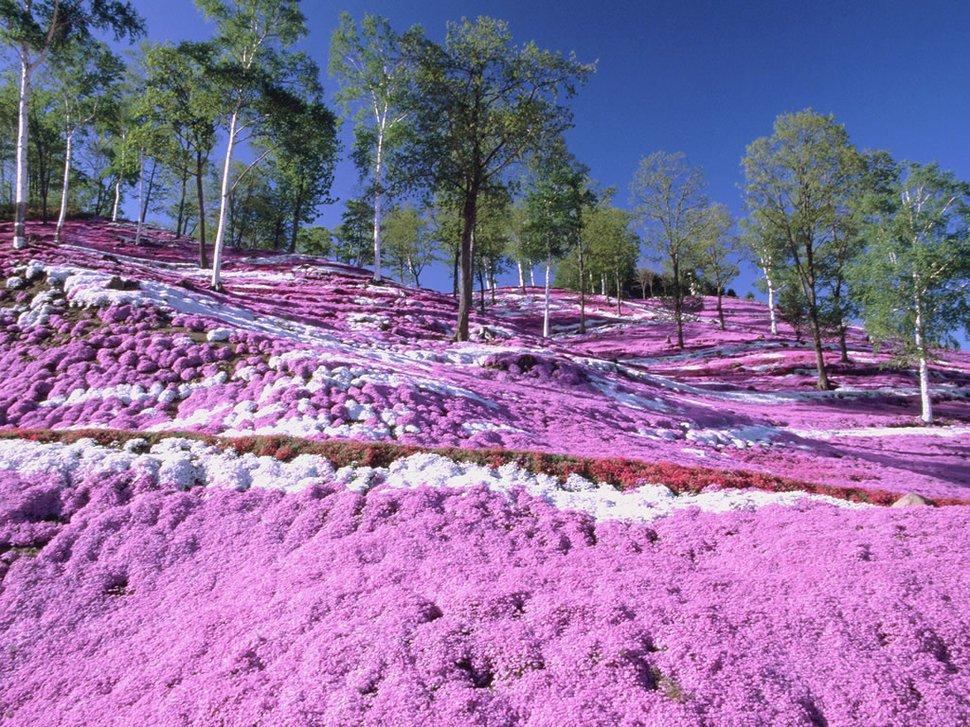 lugares coloridos 4