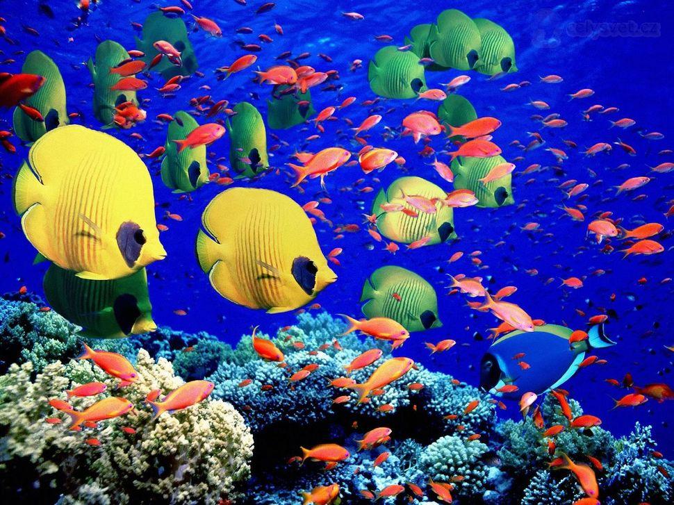 lugares coloridos 5