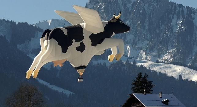 vaca-globo