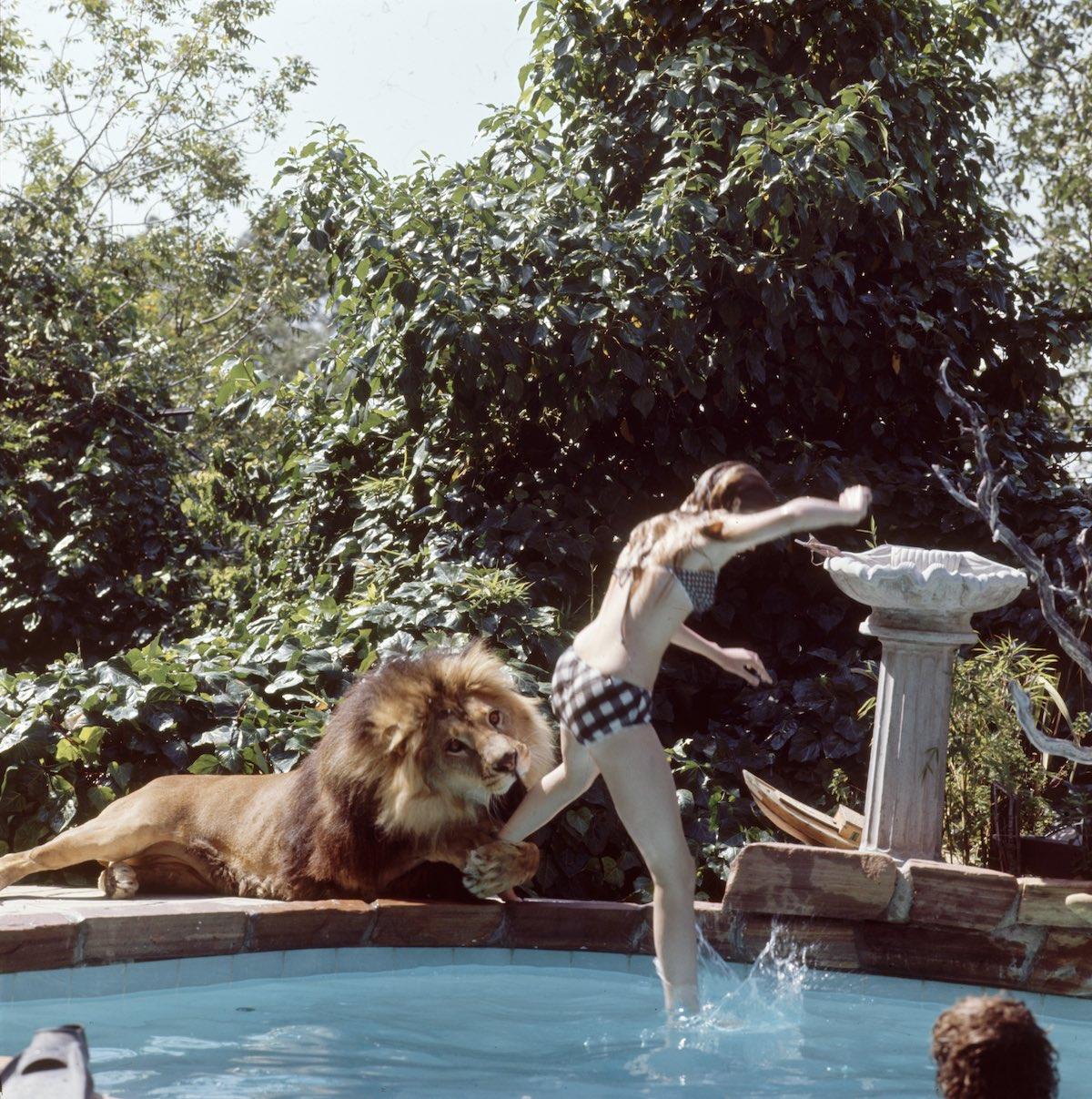 Melanie saltando en una piscina, mientras que Neil le agarra la pierna.