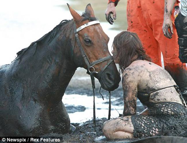 caballo-rescate-3