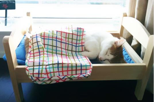 cama-gatos-ikea