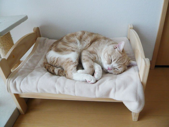camas gatos ikea 1
