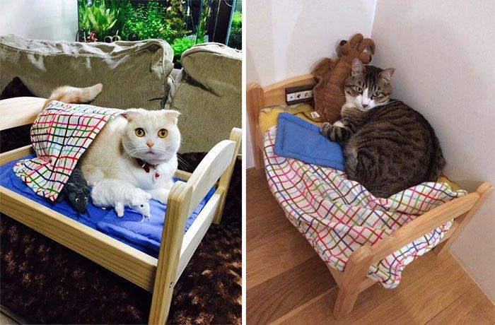 camas gatos ikea 12