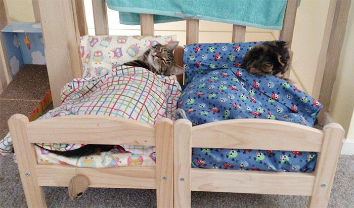 camas gatos ikea 3