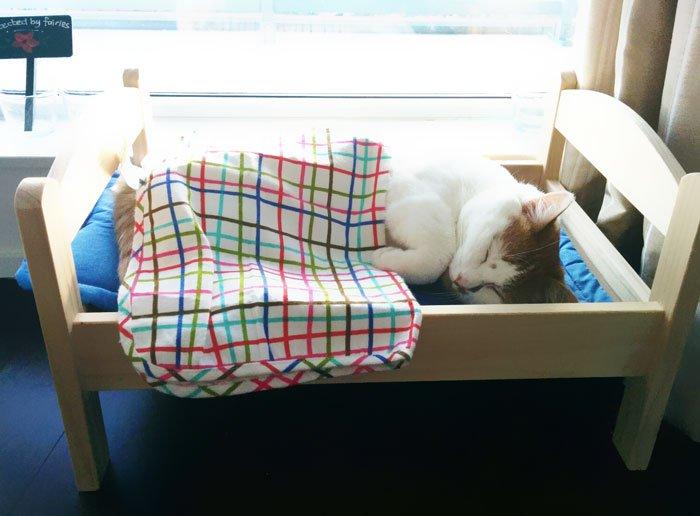 camas gatos ikea 6