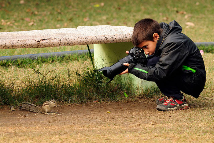 ganador_wildlife_photographer2