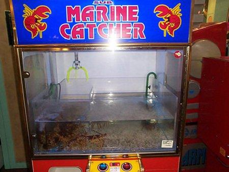 maquinas vending 2 2
