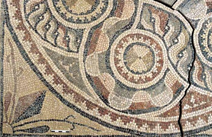mosaicos_zeugma_13