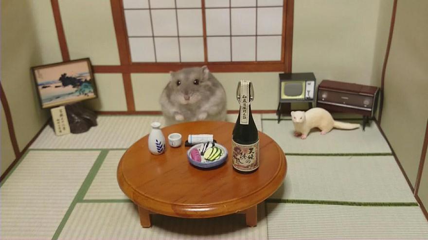 ratones japoneses 10