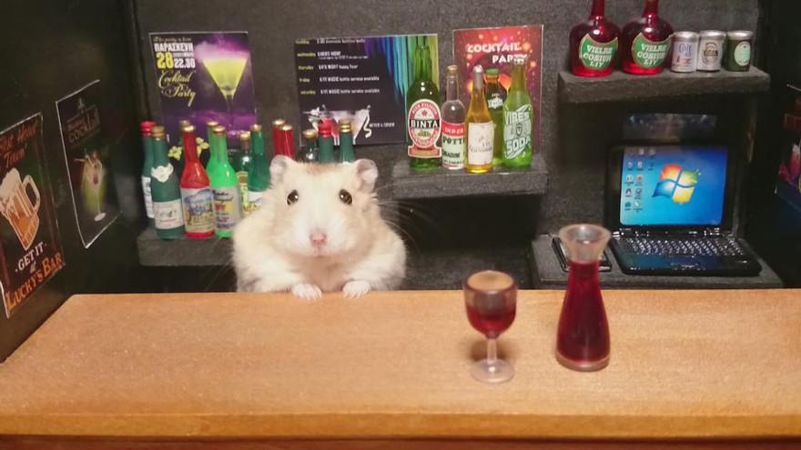 ratones japoneses 1