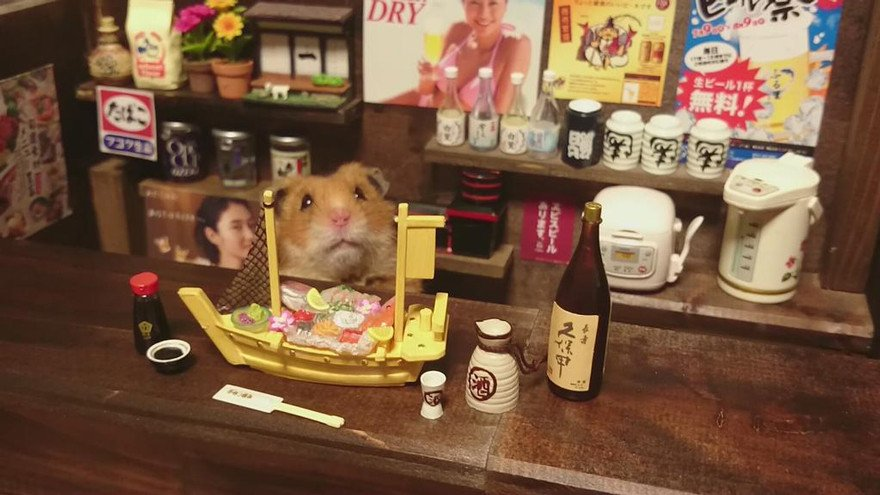 ratones japoneses 12