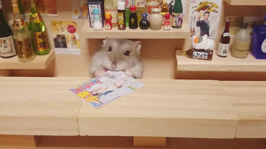 ratones japoneses 13
