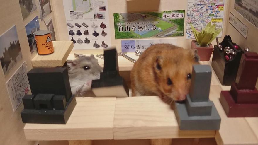 ratones japoneses 14