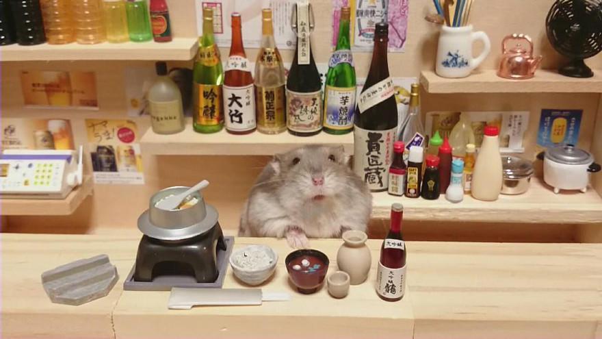 ratones japoneses 17