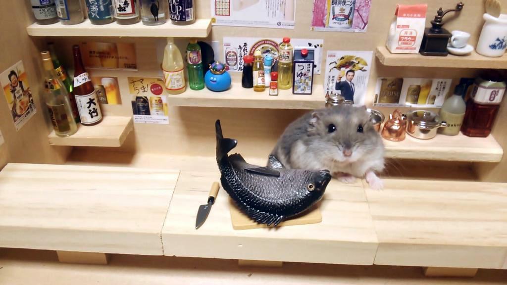 ratones japoneses 2