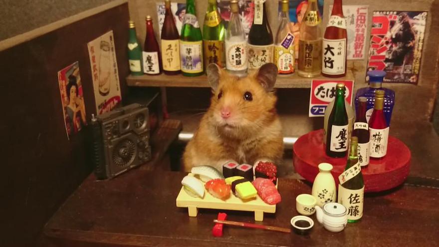 ratones japoneses 3