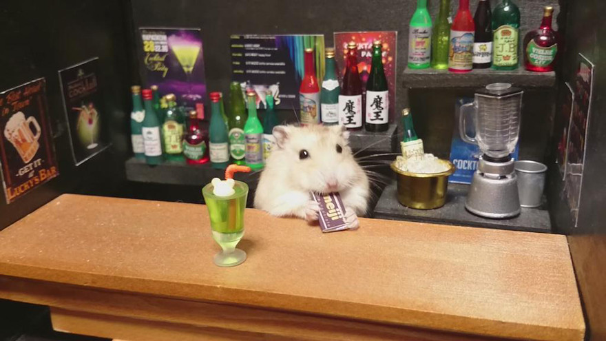 ratones japoneses 5