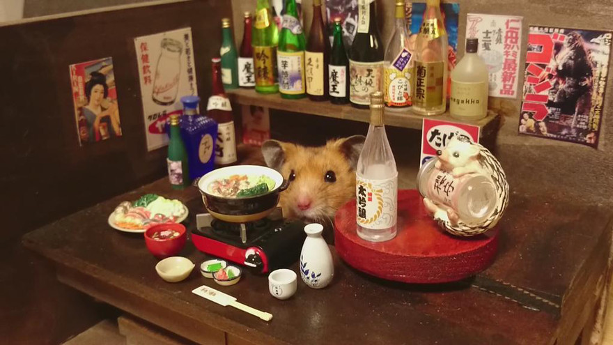ratones japoneses 7