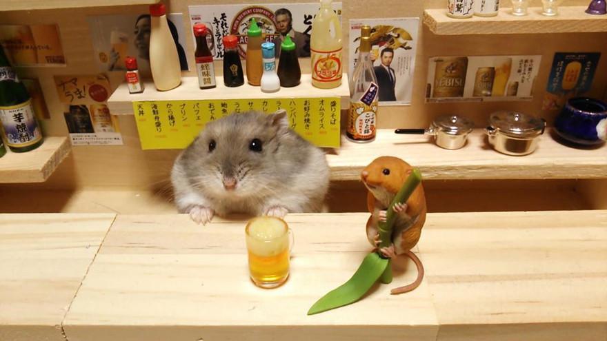 ratones japoneses 8