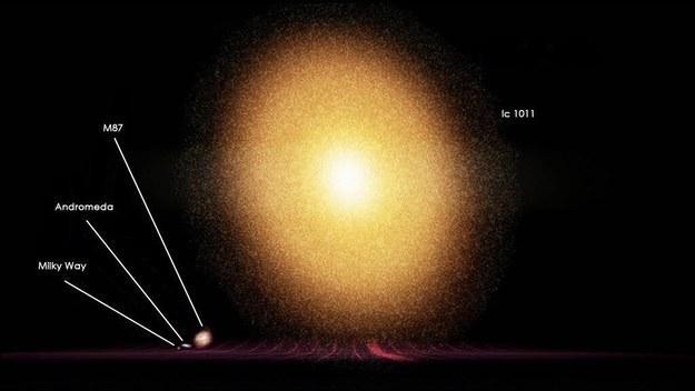 universo a escala 22