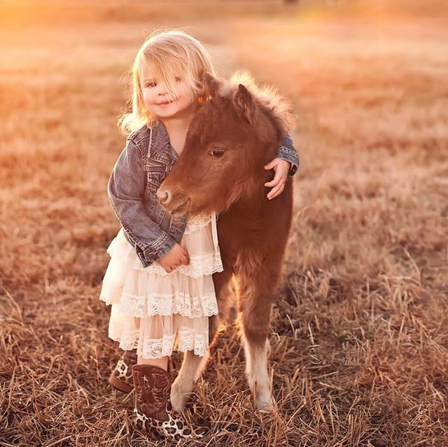 animales_adorables_2014_12
