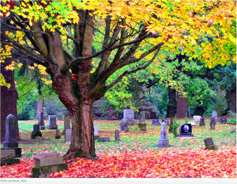 cementerios bonitos 13