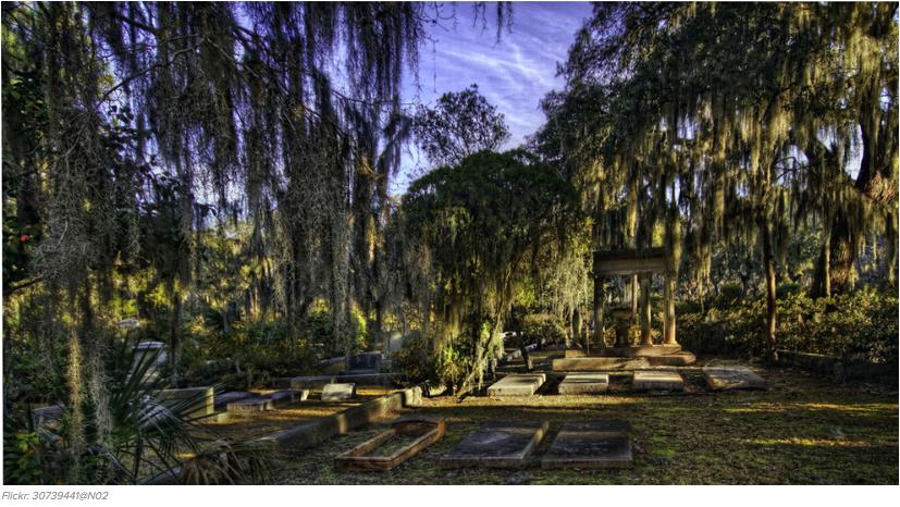 cementerios bonitos 21