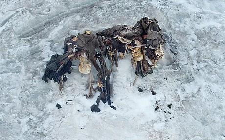 descubrimientos en glaciares 16