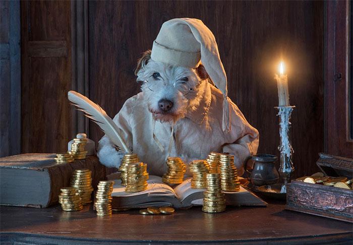 disfraz perro navidad 7