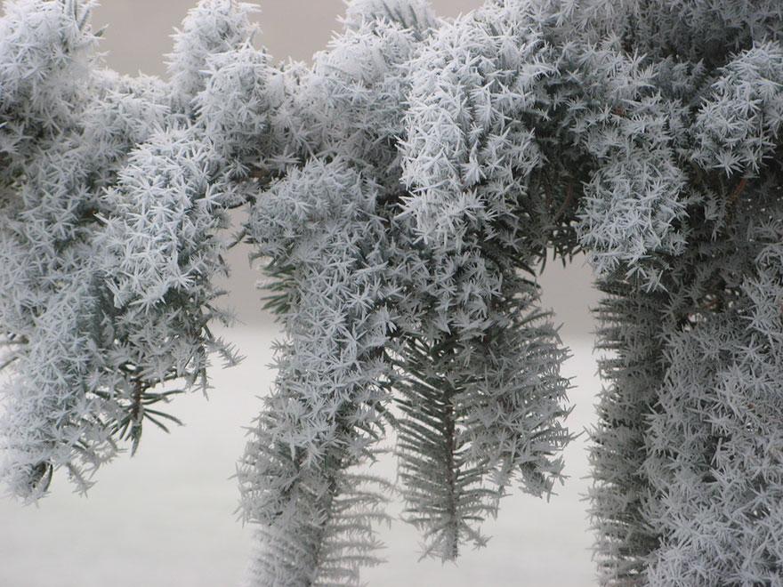 formaciones_de_hielo_16