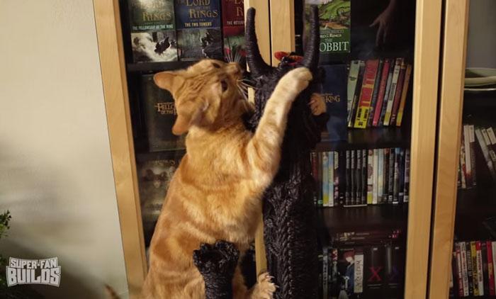 gato señor de  los anillos 10