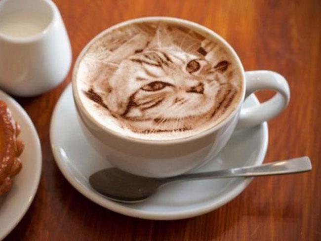El arte latte el nuevo arte de dibujar increbles cuadros en el