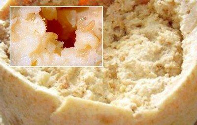 gusanos-queso