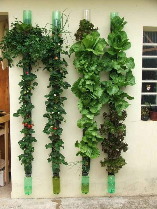 Comienza tu huerto urbano fabricando tus propios for Reja para jardin vertical
