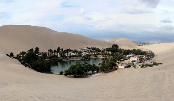 oasis-desierto