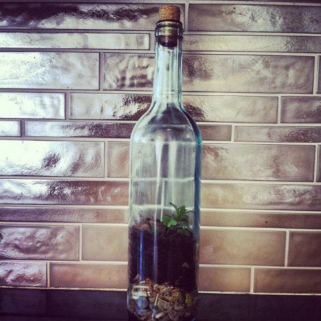botellas_6