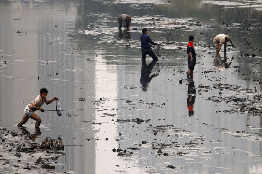 Fishermen walk through the muddy bottom of a polluted canal collecting fish in central Beijing
