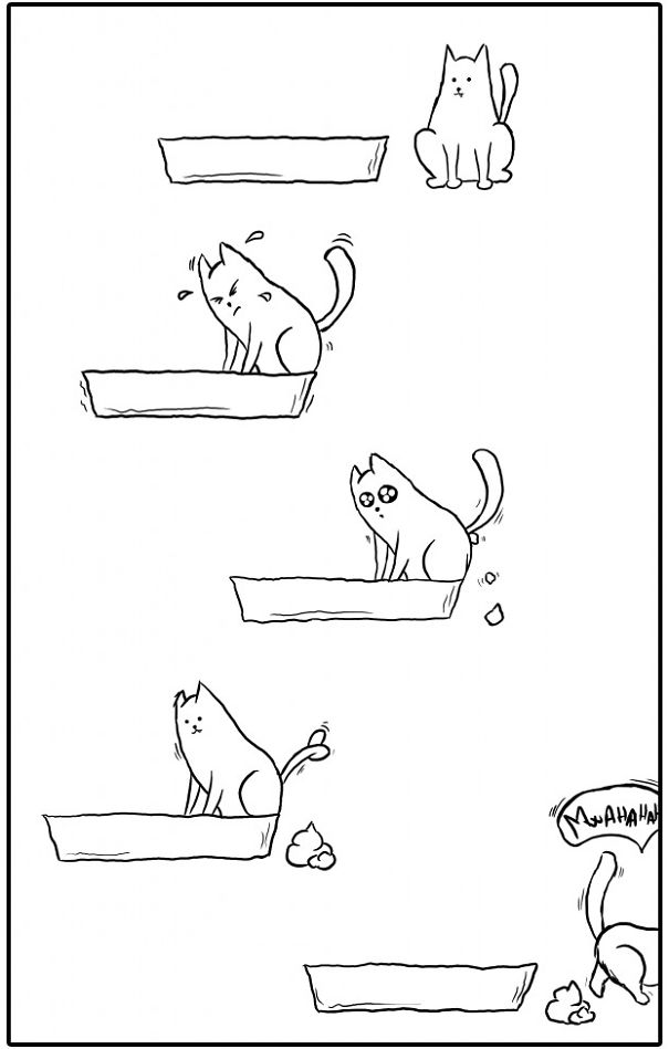 divertida logica felina 29