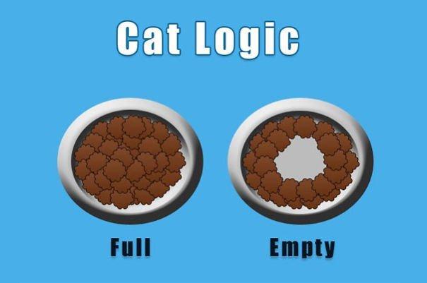divertida logica felina 9