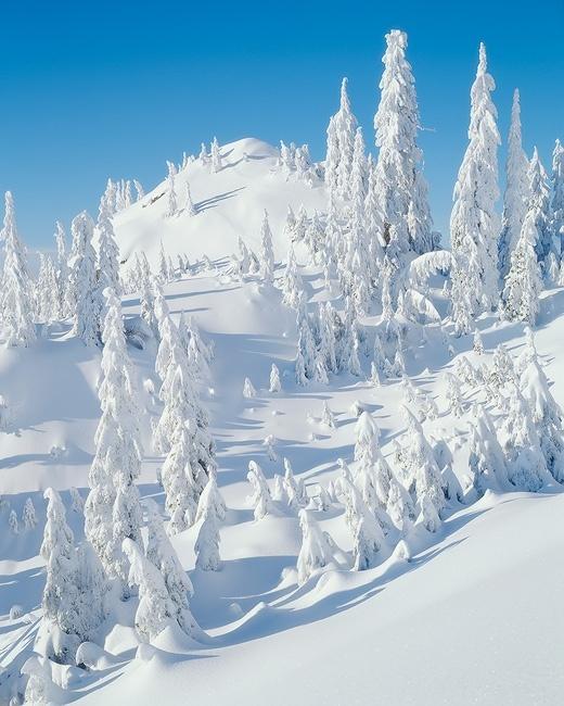 fotografia invierno 12