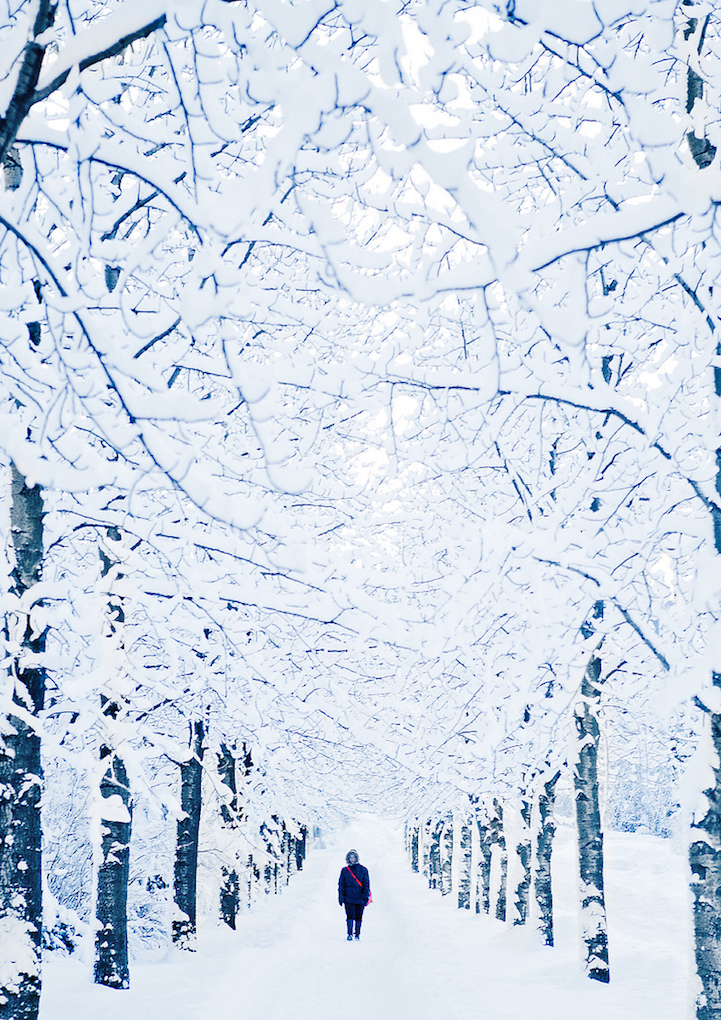 fotografia invierno 18