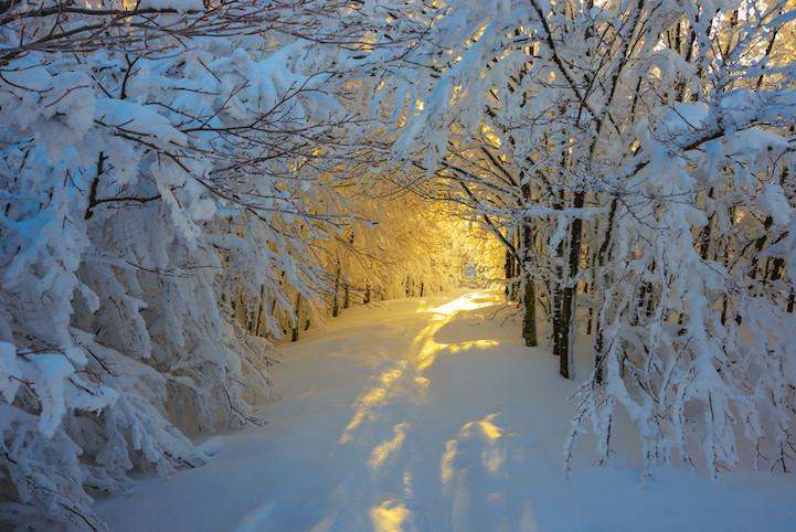 fotografia invierno 4