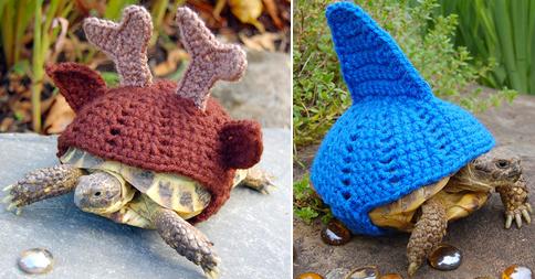 tortugas-ganchillo