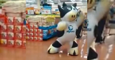vaca-baila