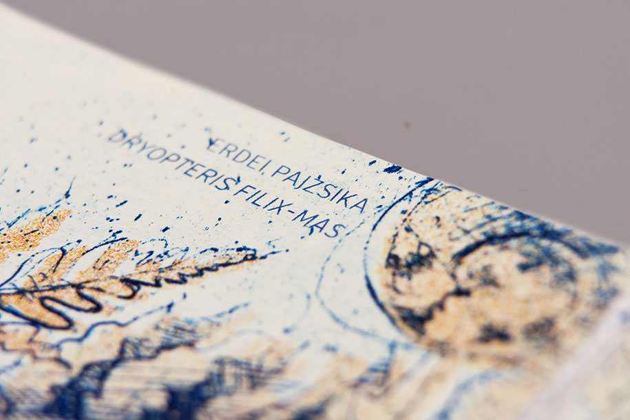 billetes_euro_12
