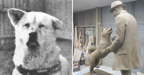 hachiko-estatua